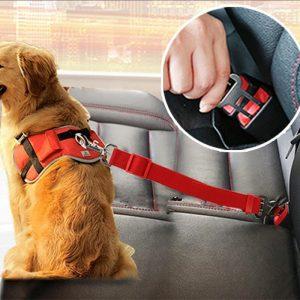 Pet Safe | Cinto De Segurança Pet