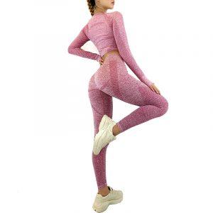 Roupa de ginástica academia sem costura roupas feminino