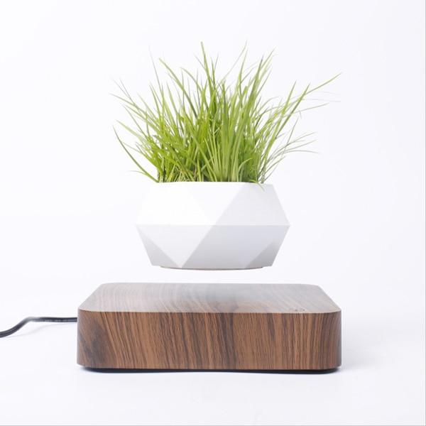 Vaso De Planta Com Levitação Magnética